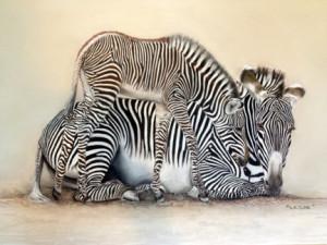 Zebras-Blog2