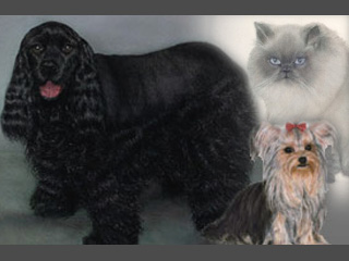 L.A. Cline Fine Art - Commissioned Pet Portraits